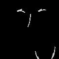 pet-caricature-oliver